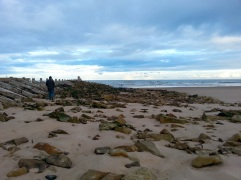 Wandering along the beach at Lossiemouth